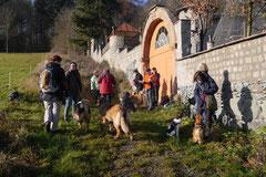 Weiltal, T-Dogs, 7.12.2014, Foto Nr.11