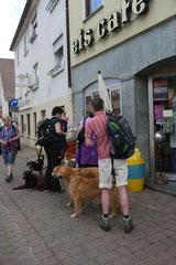 Lindenfels mit Picnic,T-Dogs,15.6.2014,Foto Nr.7