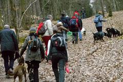 Hundeschulausflug-Sicher auf 4 Pfoten-Herzberg, April 2013, Foto Nr.19