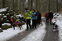 Altkönig,T-Dogs,01.2.2014, Foto Nr.5
