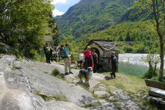 Schweiz-Tessin T-Dogs,Mai 2013, Foto Nr.12