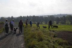 Grünwiesenweiher Welttierschutztag, T-Dogs, 4.10.2014 Foto Nr.11
