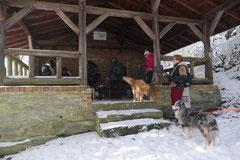 Nele Neuhaus Krimi Tour, T-Dogs, 1.2.2015 Foto Nr.18