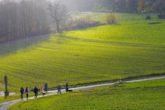 Rhön,Wellness+Wandern,T-Dogs,7.-9.11.2014, Foto Nr.13
