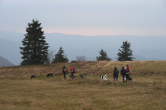 Rhön,Wellness+Wandern,Nov 2013 Foto Nr.:12