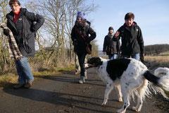 Rod an der Weil, T-Dogs,12.1.14, Foto Nr.5