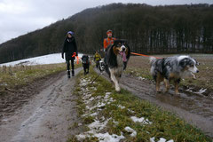 Irrbachquelle,T-Dogs,26.1.14, Foto Nr.14