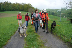 Fischbachtal, T-Dogs 4.5.13, Foto Nr.21