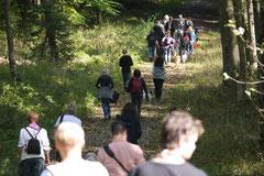 Grünwiesenweiher Welttierschutztag, T-Dogs, 4.10.2014 Foto Nr.15