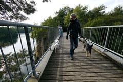 Hundeschulausflug-Sicher auf 4 Pfoten-28.9.13 Foto Nr.3