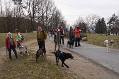 Lindenfels, T-Dogs, 7.3.2015 Foto Nr.19