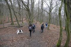 Schmitten zur Landsteiner Mühle,T-Dogs, 11.1.2014,Foto Nr.3