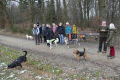 Schnuppertour Gimbacher Hof,T-Dogs,31.1.2015 Foto Nr.8