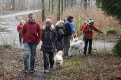 Schnuppertour Zacken,T-Dogs,17.1.2015, Foto Nr.1
