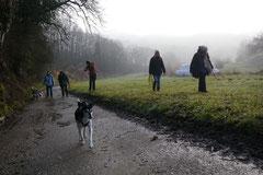 Bensheimer Weinlagen, T-Dogs, 25.1.14, Foto Nr.1