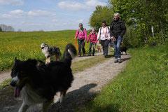 Rhön Frühlingserwachen,T-Dogs,3.+4.5.2014, Foto Nr.33