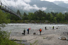 Schweiz-Tessin,T-Dogs,Mai 2014 Foto Nr.10