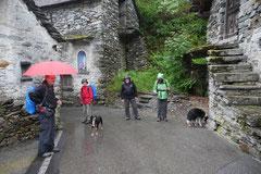 Schweiz-Tessin,T-Dogs,Mai 2014 Foto Nr.9