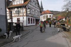 Lindenfels, T-Dogs, 7.3.2015 Foto Nr.3