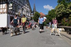 Lindenfels mit Picnic,T-Dogs,15.6.2014,Foto Nr.2
