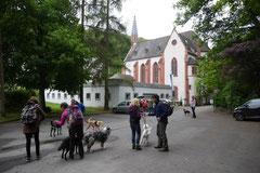 Himmelssteig+Mühlenweg,T-Dogs,10.5.14,Foto Nr.1