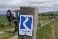 Rheinsteig Light, T-Dogs, Mai 2014, Foto Nr.14