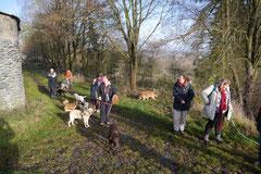 Weiltal, T-Dogs, 7.12.2014, Foto Nr.9