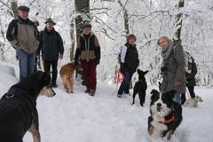 Nele Neuhaus Krimi Tour, T-Dogs, 1.2.2015 Foto Nr.16