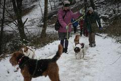 Schnuppertour Gimbacher Hof,T-Dogs,31.1.2015 Foto Nr.2