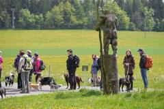 Rhön Frühlingserwachen,T-Dogs,3.+4.5.2014, Foto Nr.9