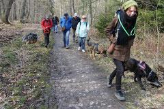 Kapersburg+Winterstein,23.3.14,T-Dogs, Foto Nr.16
