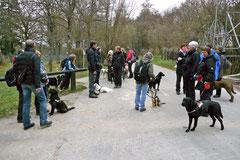 Hundeschulausflug-Sicher auf 4 Pfoten-Herzberg, April 2013, Foto Nr.26