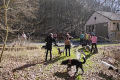 Zur Grube Glück-auf, T-Dogs,9.3.14, Foto Nr.7