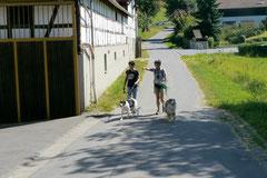 Fischbachtal, August 2012
