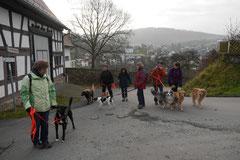 Weiltal, T-Dogs, 7.12.2014, Foto Nr.1