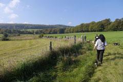 Grünwiesenweiher Welttierschutztag, T-Dogs, 4.10.2014 Foto Nr.12