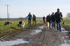 Rod an der Weil, T-Dogs,12.1.14, Foto Nr.8