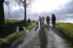 Irrbachquelle,T-Dogs,26.1.14, Foto Nr.18
