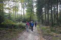 Kapersburg+Winterstein, T-Dogs, 5.10.2014, Foto Nr. 24
