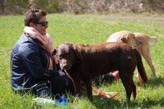 Taunushöhen,T-Dogs,18.4.2015 Foto Nr.13