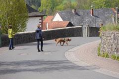 Mantrailing+Wandern Rhön,T-Dogs,30.4.-3.5.2015 Foto Nr.31
