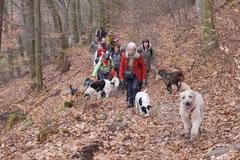 Lindenfels, T-Dogs, 7.3.2015 Foto Nr.13
