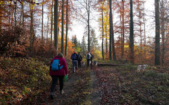 Fischbachtal,T-Dogs,23.11.2014, Foto Nr.14
