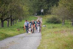 Hundeschulausflug Sicher auf 4 Pfoten, Grüner See, 28.9.14, Foto Nr.7