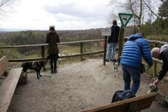 Kapersburg+Winterstein,23.3.14,T-Dogs, Foto Nr.3