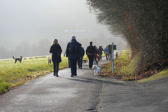 Weiltal, T-Dogs, 7.12.2014, Foto Nr.5