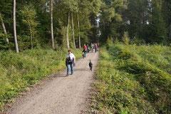 Hundeschulausflug Sicher auf 4 Pfoten, Grüner See, 28.9.14, Foto Nr.11
