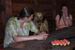 Wispersee, T-Dogs,28.07.2013, Bild Nr.9