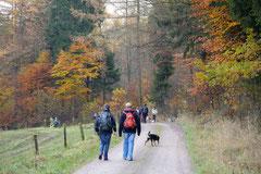 Rhön,Wellness+Wandern,T-Dogs,7.-9.11.2014, Foto Nr.2