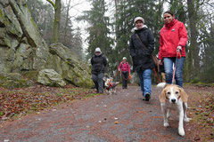 Schnuppertour Bleibeskopf,T-Dogs,14.12.2013, Foto Nr.2